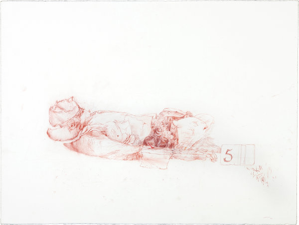 Megan Eustace: Donor Body Prepared for Spot Exam, Anatomy Department, TSM, 2010, Conte on paper, 56 x 76cm; courtesy the artist