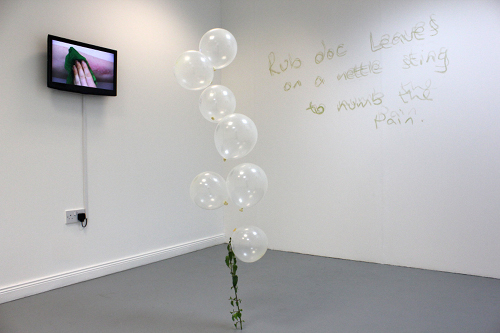 Anne Quail: cure i us, 2012, installation shot; courtesy / photo the artist