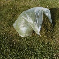 Samuel Laurence Cunnane, Bag of cut grass, 2016. 5 x 7.5 inches, courtesy of the artist.