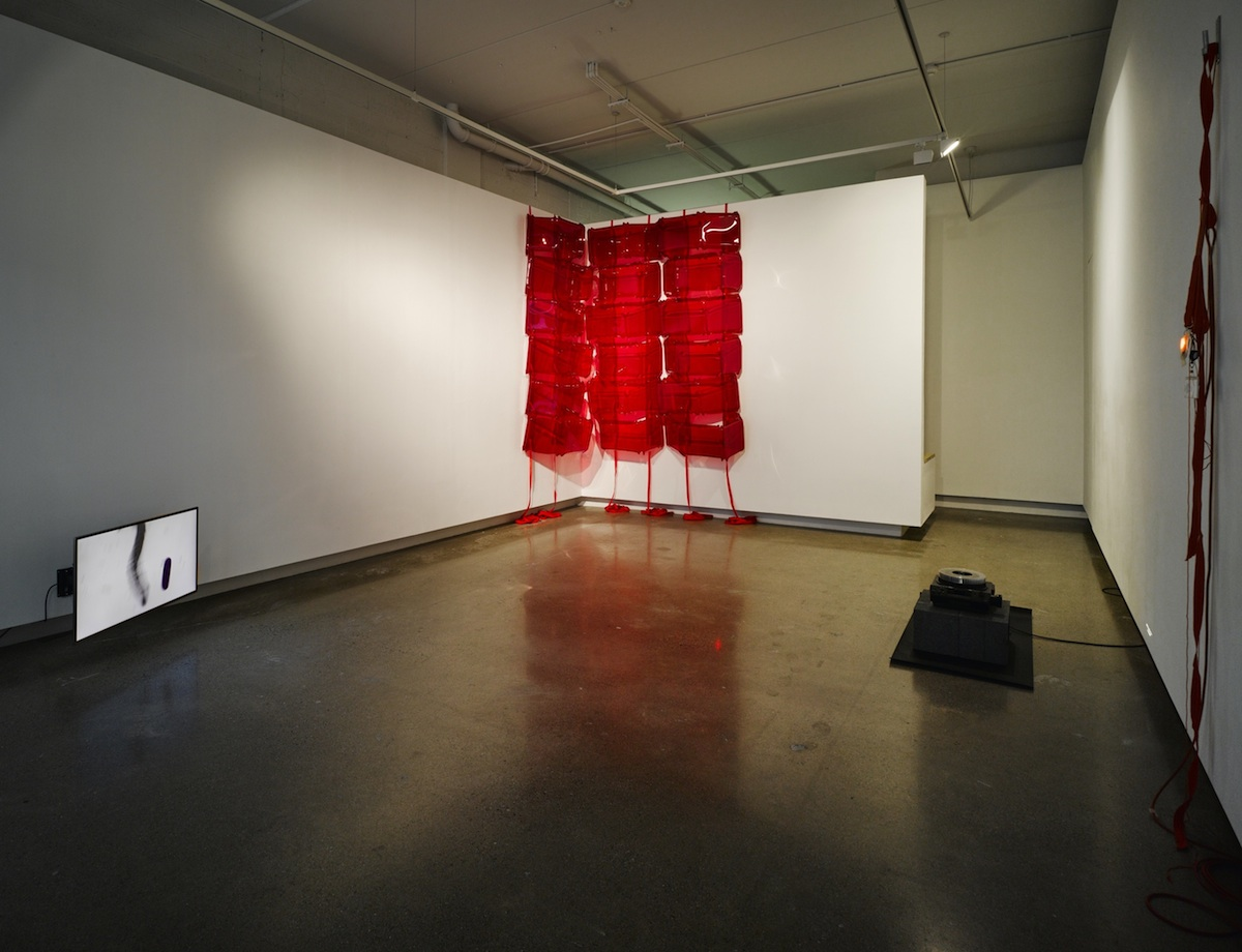 Installation shot of Denis McNulty's 'I'm Getting Parts' at Oonagh Young Gallery. Photograph courtesy of the artist.