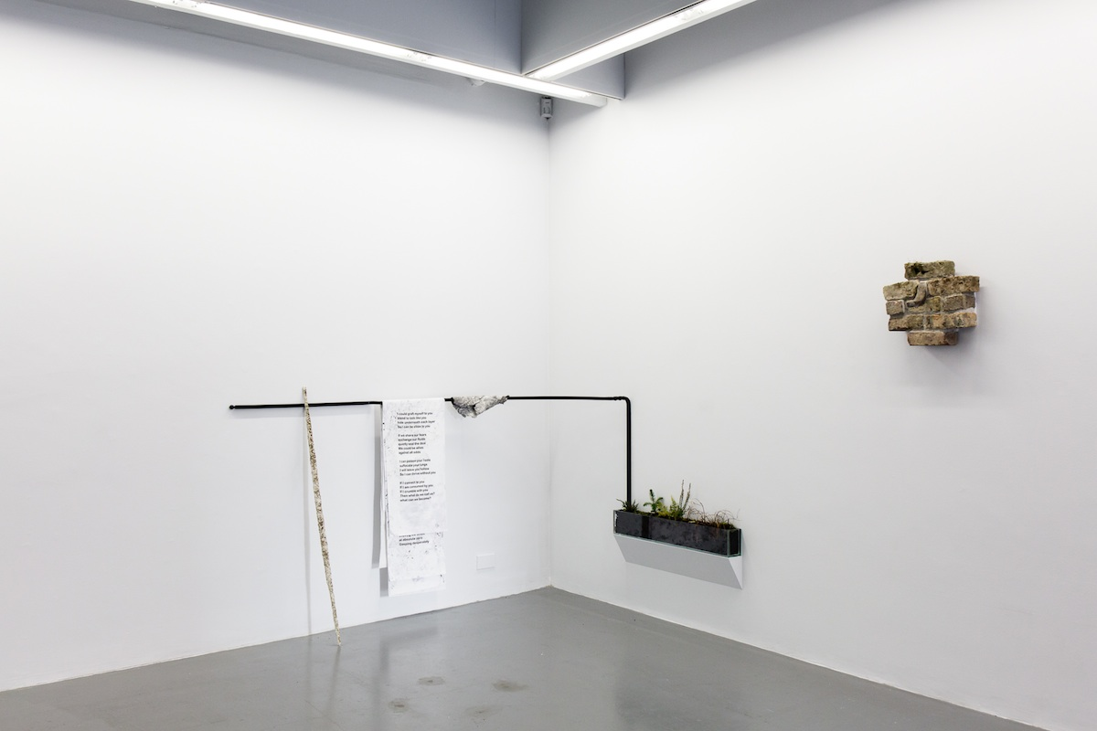 Hazel Shaw / Otobong Nkanga